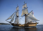 Lady Washington, stock photo